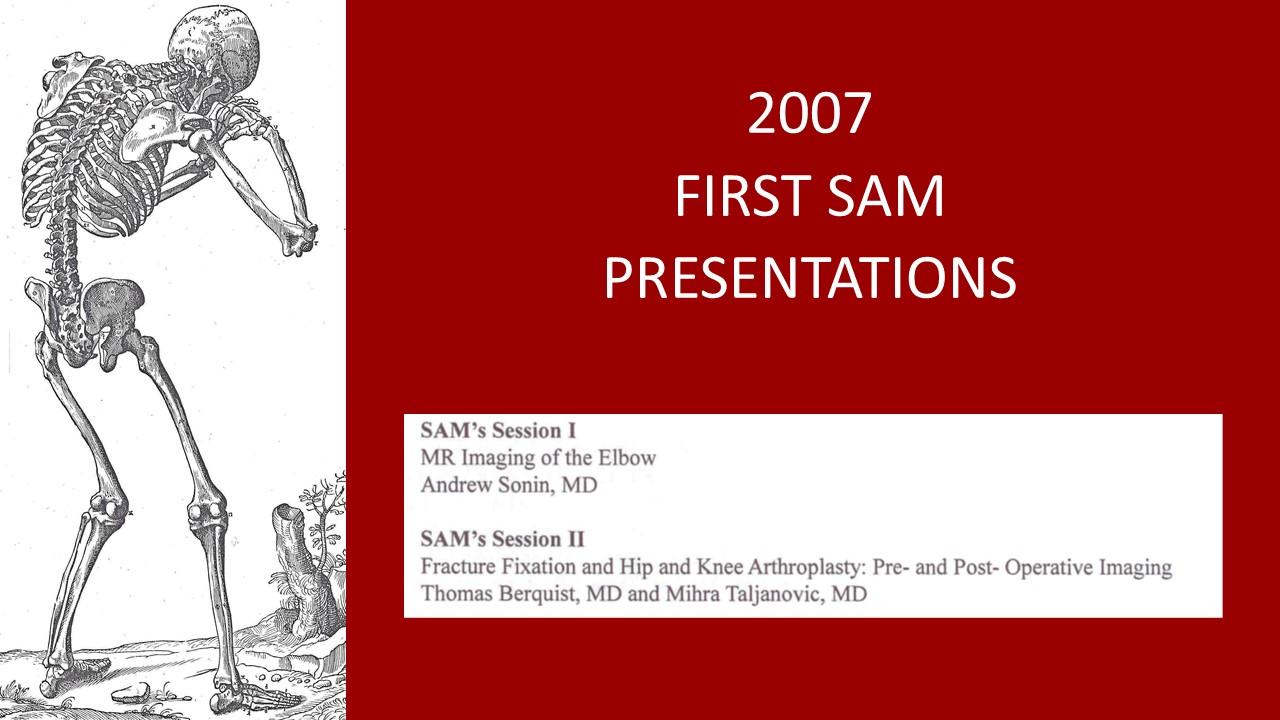 2007 SAMs